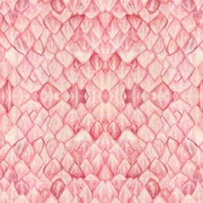 Protea Petals Pink Kaleidoscope