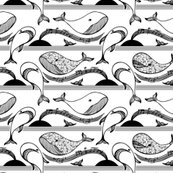 Rrrmusicalwhales_200_shop_thumb
