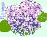 Rrrhydrangea_dresser_001_ed_thumb