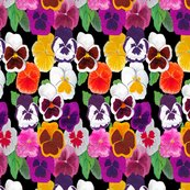 Rrpansies_shop_thumb