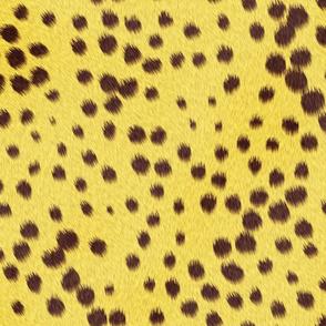 Cheetah_Skin