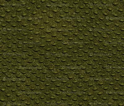 Crocodile_Skin