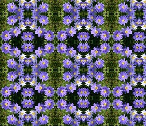 Rrrrpurple_wind_flowers_6084_sm_shop_preview