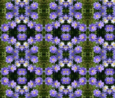 Purple Wind Flowers 6084 fabric by falcon11 on Spoonflower - custom fabric