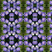 Rrrrpurple_wind_flowers_6084_sm_shop_thumb
