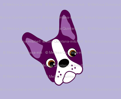 Puppy Passion the Purple Boston Terrier
