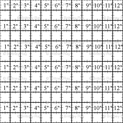 Measuring Grid I