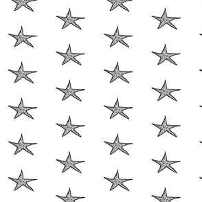 polka_super_star