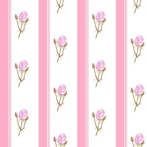 Rrrose-pinkstripessf_shop_preview