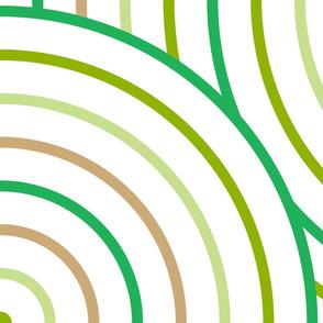 Sage Circle Stripe