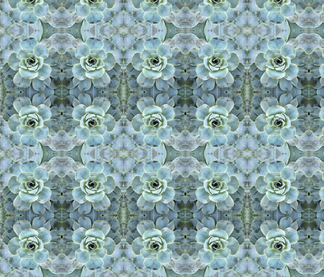 Aqua Succulent fabric by falcon11 on Spoonflower - custom fabric