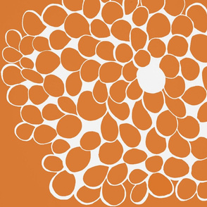 orange and white circle flower