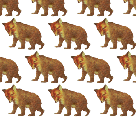 weary_foxbear fabric by sazm on Spoonflower - custom fabric