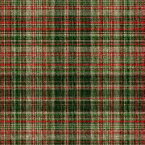 Woodland_faerie_plaid___peacoquette_designs___copyright_2012_shop_preview