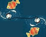 Rrrfishing-gold_fish-01_thumb