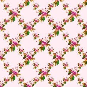 Rose Trellis pink