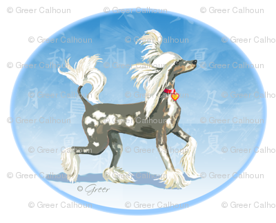 Perky Chinese Crested Dog