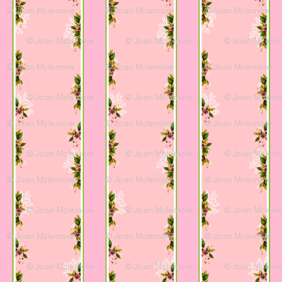 Roses Stripes and Floral Vines