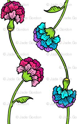 Carnation Brights
