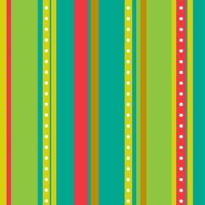 Coordinate Stripes 4
