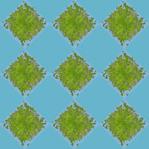 Lattice leaves