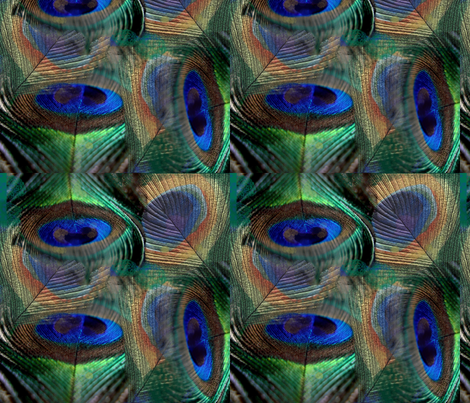 peacock fabric by claudiavv on Spoonflower - custom fabric