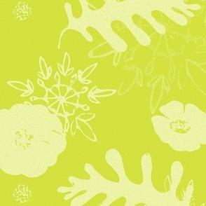 mustard botanical