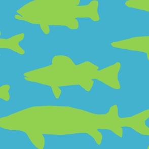 greenfish-ed