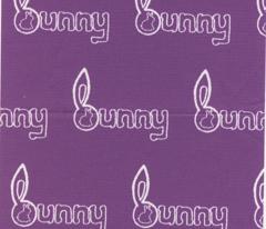 Bun Bun Bunny