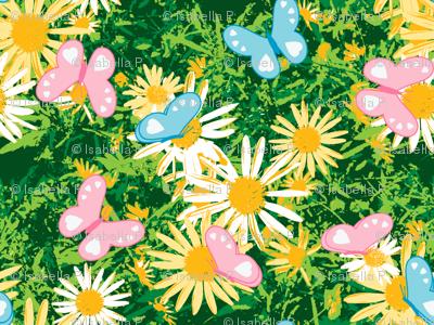 Butterflies Love Wild Yellow Daisies