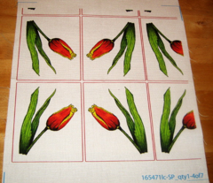 Tulips with Red Border