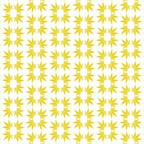 CannabisFoulard_Citrine