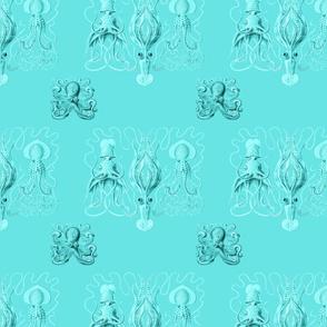 Octotoile
