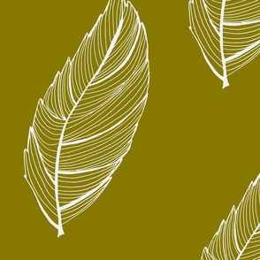 green and white feather leaf-ch