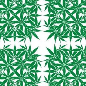 LeafSquare_Cannabis_wbgFilled