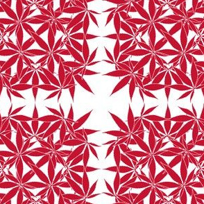 LeafSquare_Garnet_wbgFilled