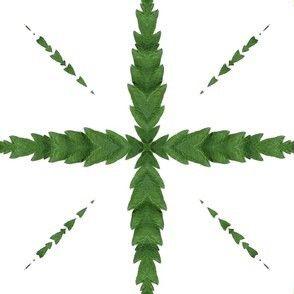 Cannabis-Pattern-02