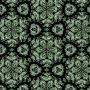 HG29b4 - High Contrast Ferns