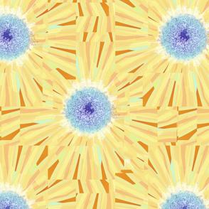 ©2011 Sunflower Splash