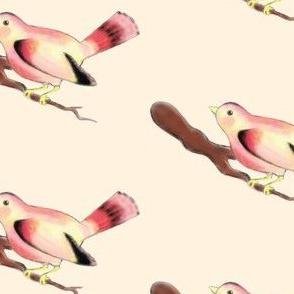 The Pretty Bird
