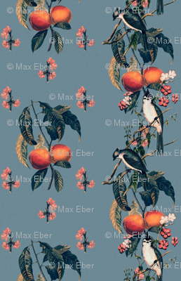 Peaches and Chickadees