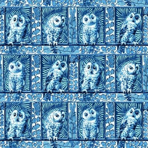boxed owls blue