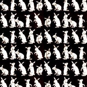 Hare-um Scare-um