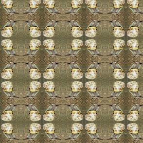 Snail 1 medium