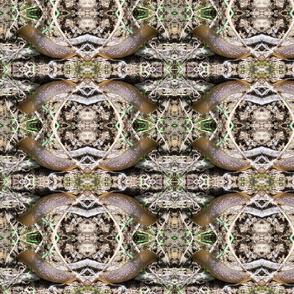 Slug 01 medium