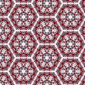 Sangres's Hexagons