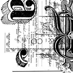 Typographic History
