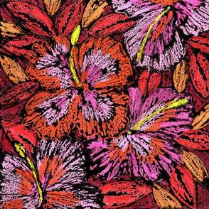 NB-firework_hibiscus_