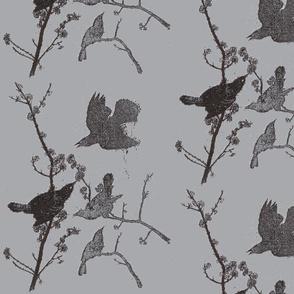 Blackbirds on Grey