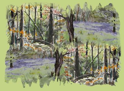 watercolor_spring_autumn_3551